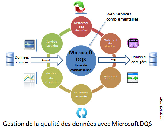 INFEENY_Qualite_des_donnees_Microsoft_dqs